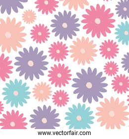 white background with colorful pattern of daisy flowers