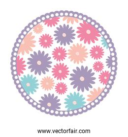 white background with colorful circular frame with pattern of daisy flowers