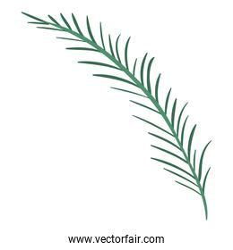 white background with colorful silhouette of branch with linear leaves
