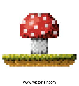 color pixelated mushroom in meadow