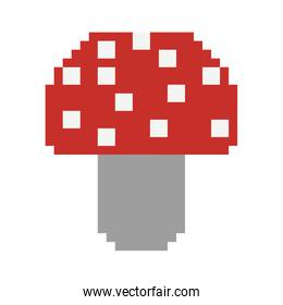colorful pixelated mushroom in red color with dots