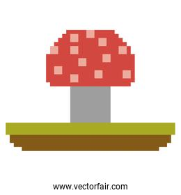 colorful pixelated mushroom in meadow