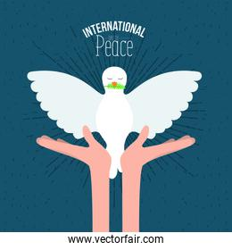 color poster with sparks and hands holding a front view pigeon with olive branch in peak and text international day of peace with linear brightness