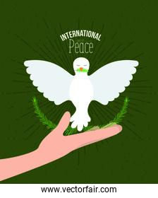 green color poster with sparks and hand holding a pigeon with olive branch in peak with decorative half crown of leaves and and text international day of peace with linear brightness