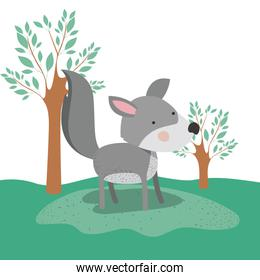 wolf animal caricature in forest landscape background