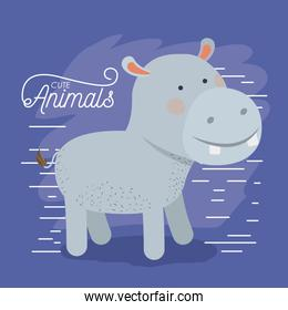 hippopotamus animal caricature in color background with lines