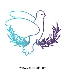 pigeon peace symbol side view in olive branch on gradient color silhouette from blue to purple