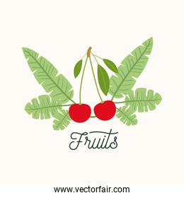 cherries fruit with leaves on white background