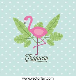 flamingo bird tropical with leaves on decorative dots color background