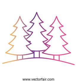 pine trees landscape set on gradient color silhouette from yellow to fuchsia