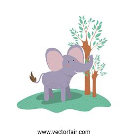 elephant cartoon in forest next to the trees in colorful silhouette