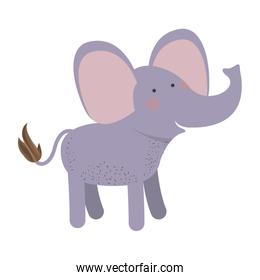 elephant cartoon colorful silhouette in white background