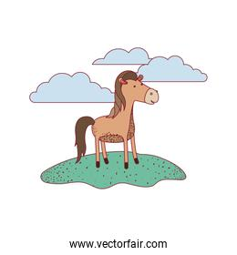 horse cartoon in outdoor scene with clouds on colorful silhouette with thin contour