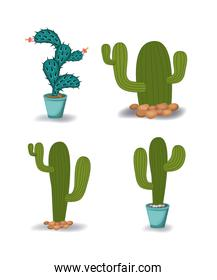 natural cactus plant and cactus pot set in colorful silhouette over white background
