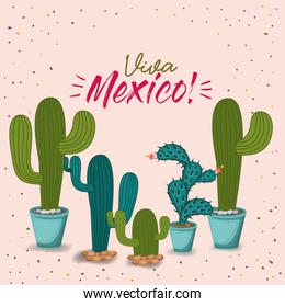 viva mexico colorful poster with cactus plants