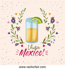 viva mexico colorful poster with tequila glass with lemon slice