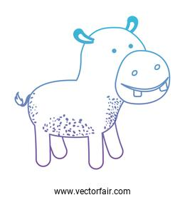 hippopotamus cartoon in degraded blue to purple color silhouette