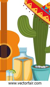 cactus with mexican party icons