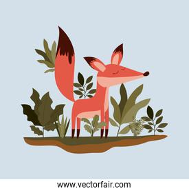 fox in the forest scene