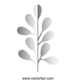 branch with leafs silvery decoration