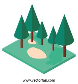 pines trees plants in the park scene isometric
