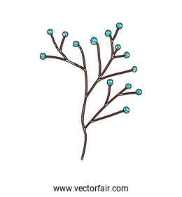 branch with seeds natural icon