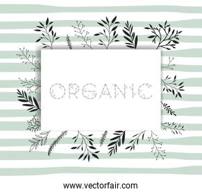 organic word with handmade font and floral decoration