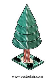 pine tree plant isometric icon