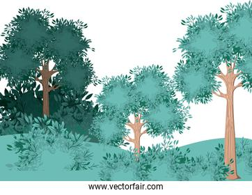 forest scene painted watercolor style