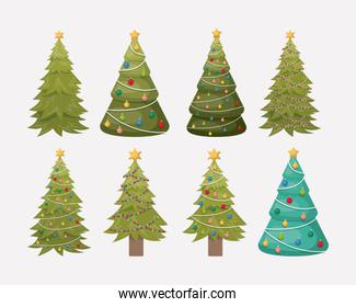 christmas pines trees set decoration