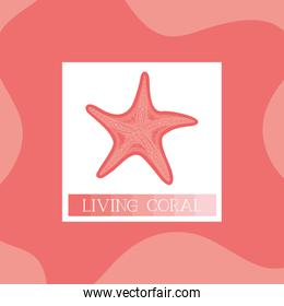 starfish icon living coral style