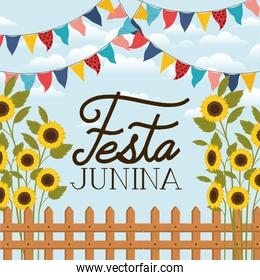 festa junina with wooden fence and sunflowers garden