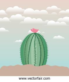 cactu planted in garden icon