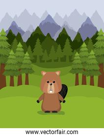 Beaver animal and pine trees design