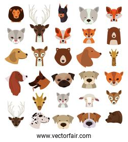 Animals Set in flat style, vector illustration