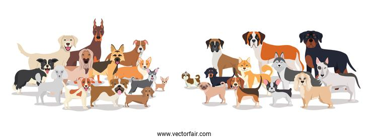 group of dogs pets characters