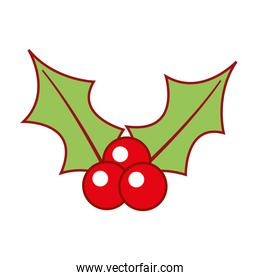 christmas berry holly leaves and fruit decoration