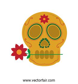 skull with flower in the mouth the day of the death mexican
