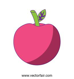 school apple back study elementary symbol