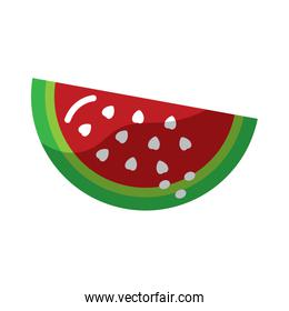 watermelon fruit icon image