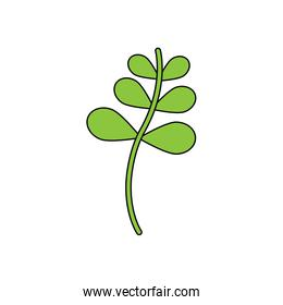 branch with green leaves nature isolated icon