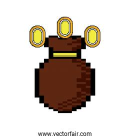 video game money bag coins fortune