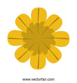flower floral icon image