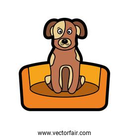 dog or puppy on bed pet icon image