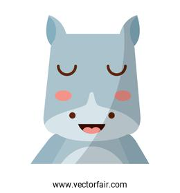 cute portrait hippo animal baby with close eyes