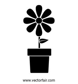 flower in pot icon image