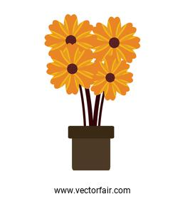 potted flower natural decoration floral icon