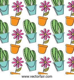 decorative potted flower and cactus plant wallpaper