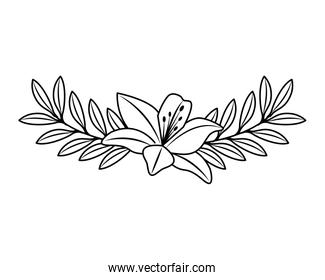 cute flower and branch with leaves foliage decoration