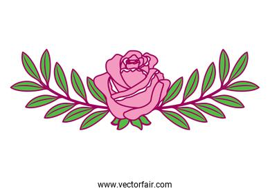 pretty flower rose and branch with leaves foliage decoration